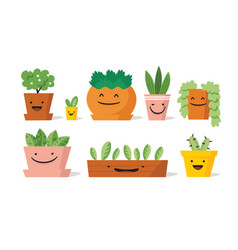 potted plants set vector image