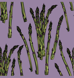 seamless pattern with asparagus vector image