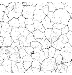 Dry Cracked Texture vector image vector image