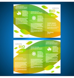 Brochure design bio eco green leaf nature vector