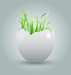 Eggshell with growing grass vector image