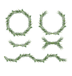Eucalyptus green wreath decorative elements set vector