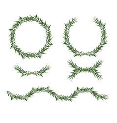 eucalyptus green wreath decorative elements set vector image