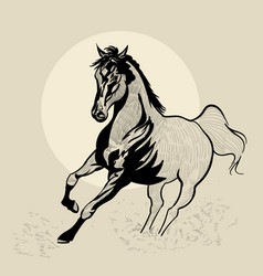 horse in motion hand drawn hand vector image