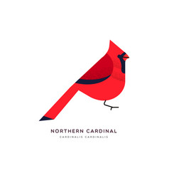 red northern cardinal bird isolated animal cartoon vector image