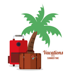 vacations summer time - palm suitcase bagagge vector image