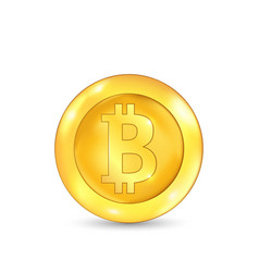 Bitcoin icon for internet money crypto currency vector