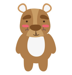 Colorful cute and surprised bear wild animal vector