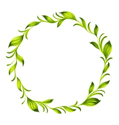 decorative circle branch of green tea vector image