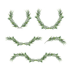 Decorative element set eucalyptus round wreaths vector