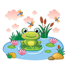 Frog sits on a leaf in the pond vector