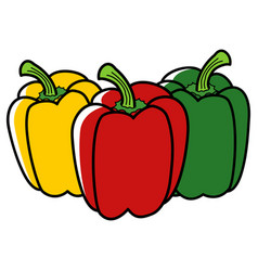 Graphic of paprika in three different colors vector