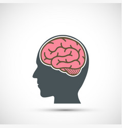 Icon human head with a brain vector