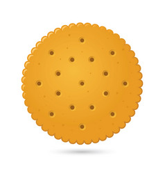 Round biscuit crackers vector