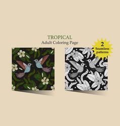 tropic vector image