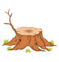 root of tree cartoon vector image