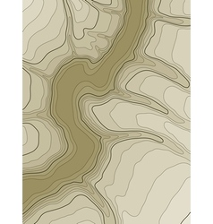 abstract topographic map vector image