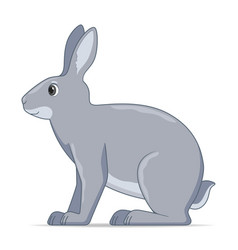 Hare sitting on a white background vector