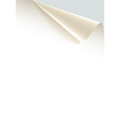 paper poster with a wrapped up corner vector image