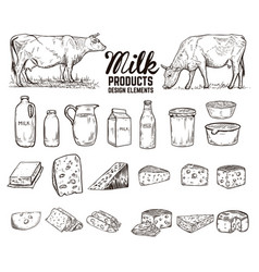 set of hand drawn milk products design elements vector image