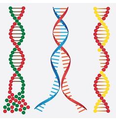 Broken DNA chains vector image