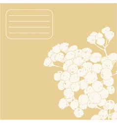 decorative card with a tansy and place for text vector image