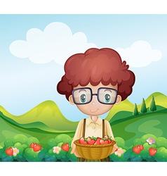 A boy harvesting strawberries vector