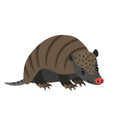 armadillo cartoon animal icon vector image