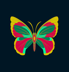 Colorful icon of butterfly isolated on dark blue vector