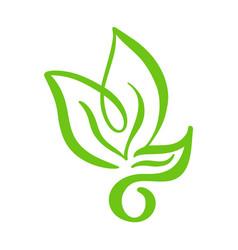 logo of green leaf of tea ecology nature element vector image