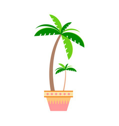 Palm tree in a pot in the style flat on a white vector
