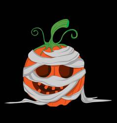 Pumpkin halloween mummy funny vector