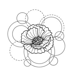 Tattoo with poppy and circles on white background vector