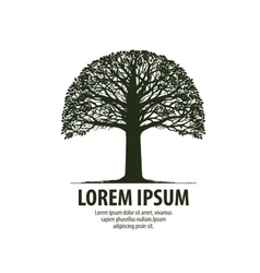 Tree logo Silhouette of oak icon Nature ecology vector image vector image