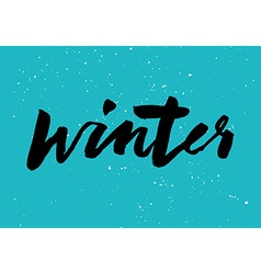 Winter calligraphy Hand lettering Brush black vector image vector image