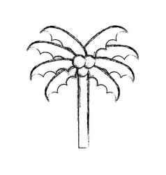 sketch draw beach palm cartoon vector image vector image
