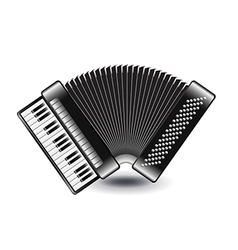 Accordion isolated on white vector image