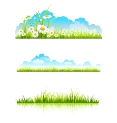Collection of green grass vector image