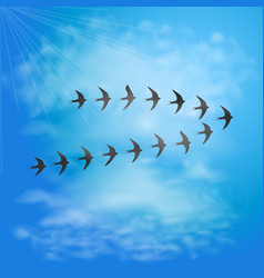 Flock of swallows in blue sky with clouds birds vector
