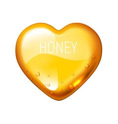 honey heart on white background vector image