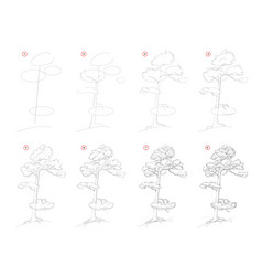 How to draw sketch pine tree creation step by vector