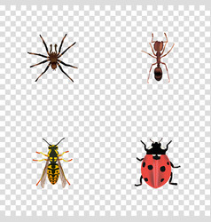 Realistic emmet arachnid ladybird and other vector