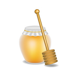 sweet honey and wooden honey dipper vector image