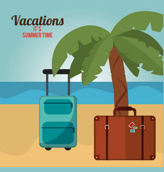 Vacations summer time palm tree bagagge beach vector