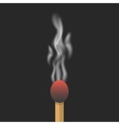 burned match with smoke vector image