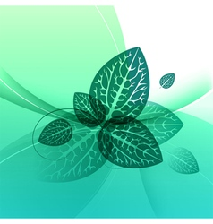 Leaves design abstract green background vector image