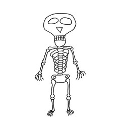 funny hand drawn skeleton drawing vector image
