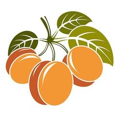 Harvesting symbol fruits isolated Three ripe vector
