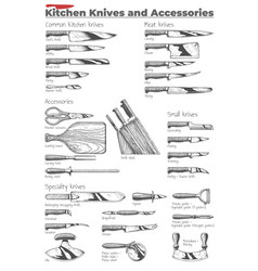 Kitchen knives and accessories vector