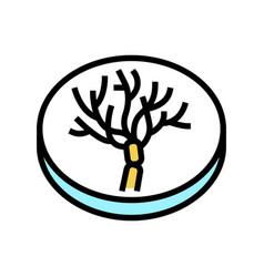 Penicillium mold fungi color icon vector